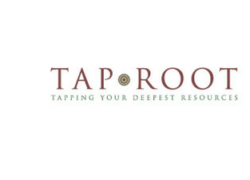 A new look at Tap Root